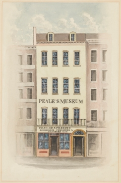 Peale's Museum