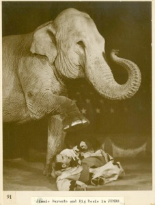 Jimmy Durante and Big Rosie the elephant