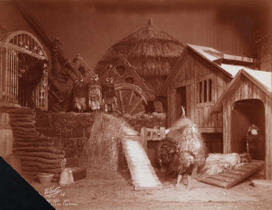 """Chantecler"" theater still, 1911. From the Theater Collection. Museum of the City of New York, 48.367.58."