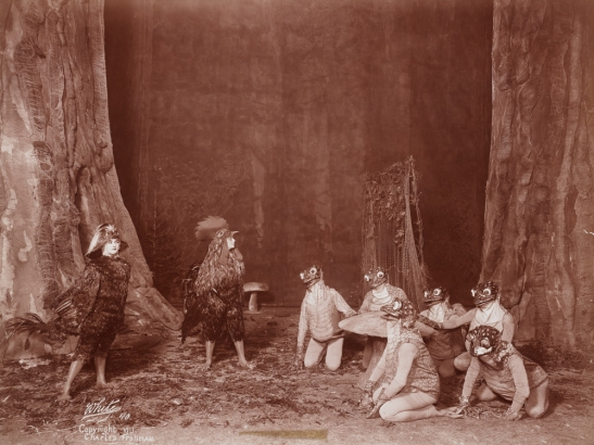 "Act 4 of ""Chantecler"" - ""In the Heart of a Wood"", 1911. From the Theater Collection. Museum of the City of New York, 48.367.53."