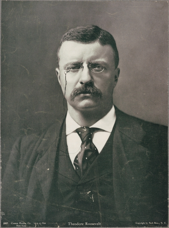 Pach Brothers. Theodore Roosevelt, ca. 1898. Museum of the City of New York. 32.152.4