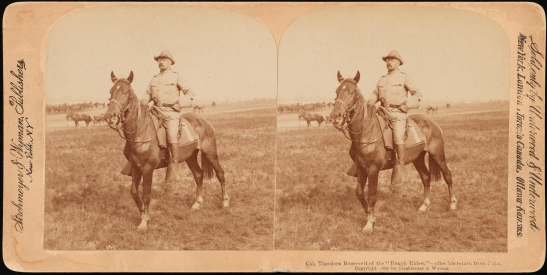"Strohmeye and Wyman. Col. Theodore Roosevelt of the ""Rough Riders"" after his return from Cuba, 1898. Museum of the City of New York. F2012.58.1078"