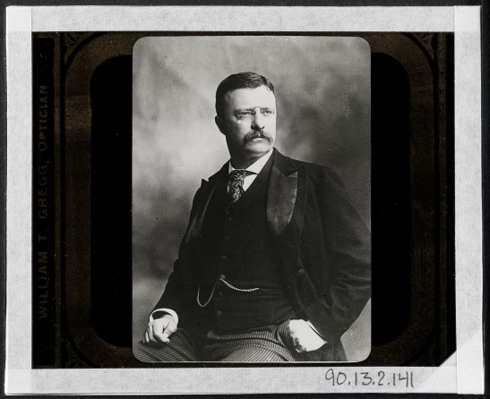 Jacob August Riis (1849-1914). Theodore Roosevelt when Governor of New York, 1898-1900, ca. 1899. Museum of the City of New York. 90.13.2.141