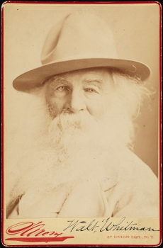 Sarony, Walt Whitman, ca. 1878, Museum of the City of New York, 39.477.10