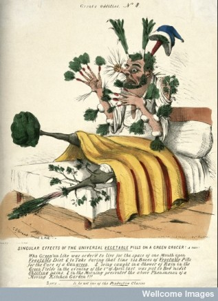 V0011125 A man in bed with vegetables sprouting from all parts of his